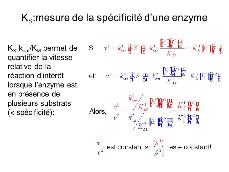 KS:mesure de la spécificité d'une enzyme