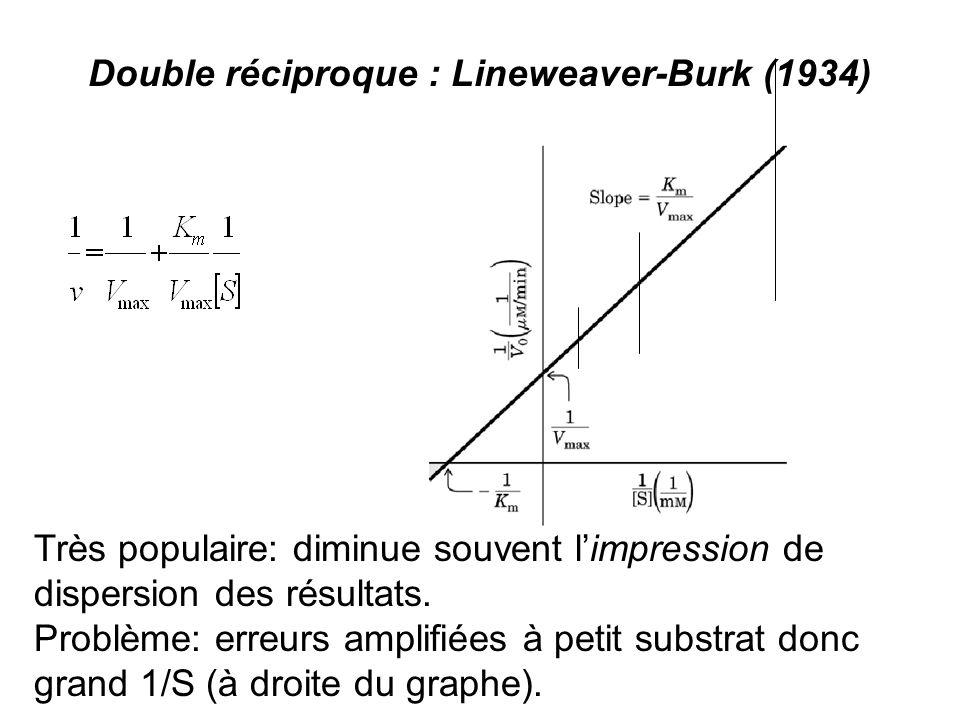 Double réciproque : Lineweaver-Burk (1934)