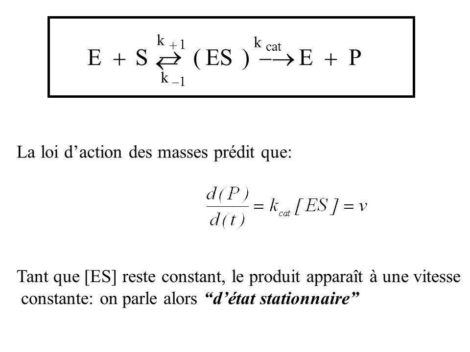 ® E + S ( ES ) -® E + P ¬ La loi d'action des masses prédit que: