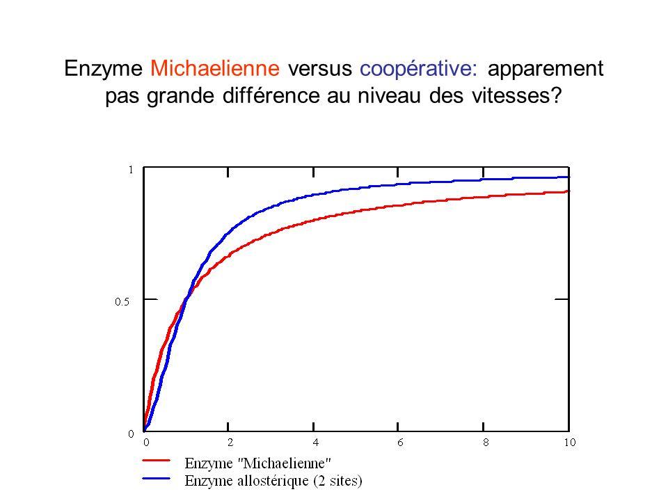 Enzyme Michaelienne versus coopérative: apparement pas grande différence au niveau des vitesses