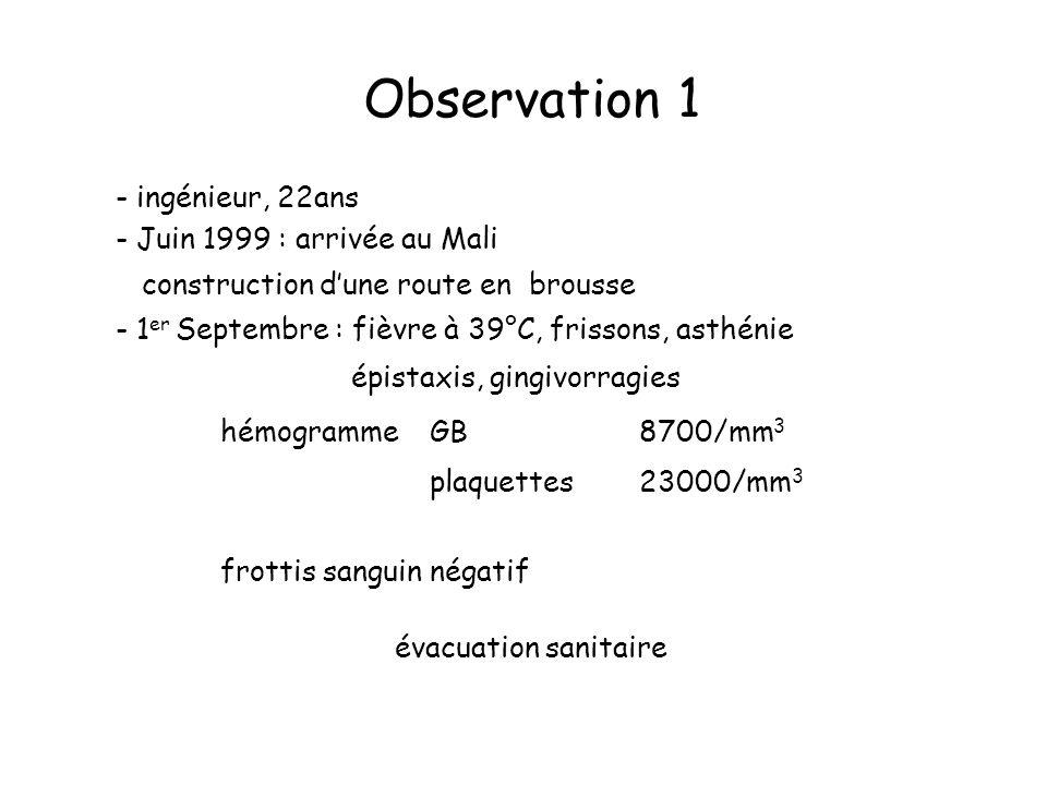 Observation 1 - ingénieur, 22ans - Juin 1999 : arrivée au Mali