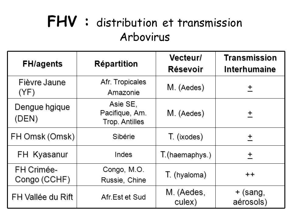 FHV : distribution et transmission Arbovirus