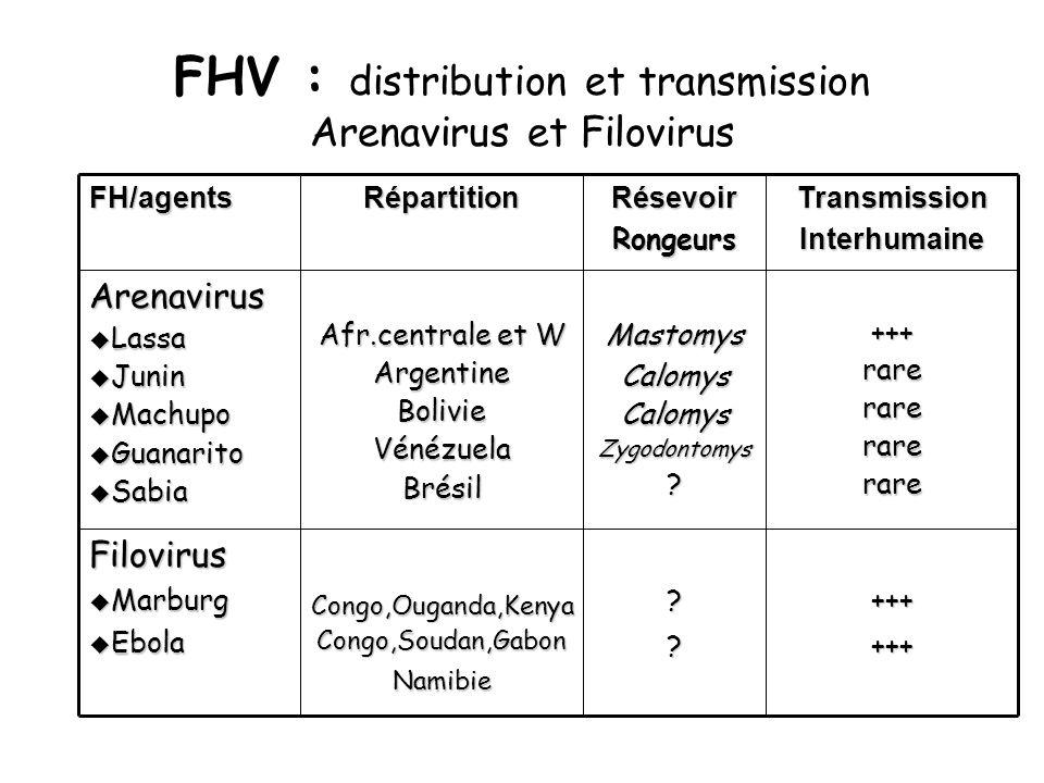 FHV : distribution et transmission Arenavirus et Filovirus