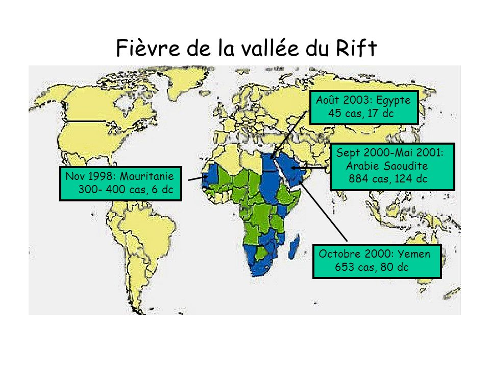 Fièvre de la vallée du Rift