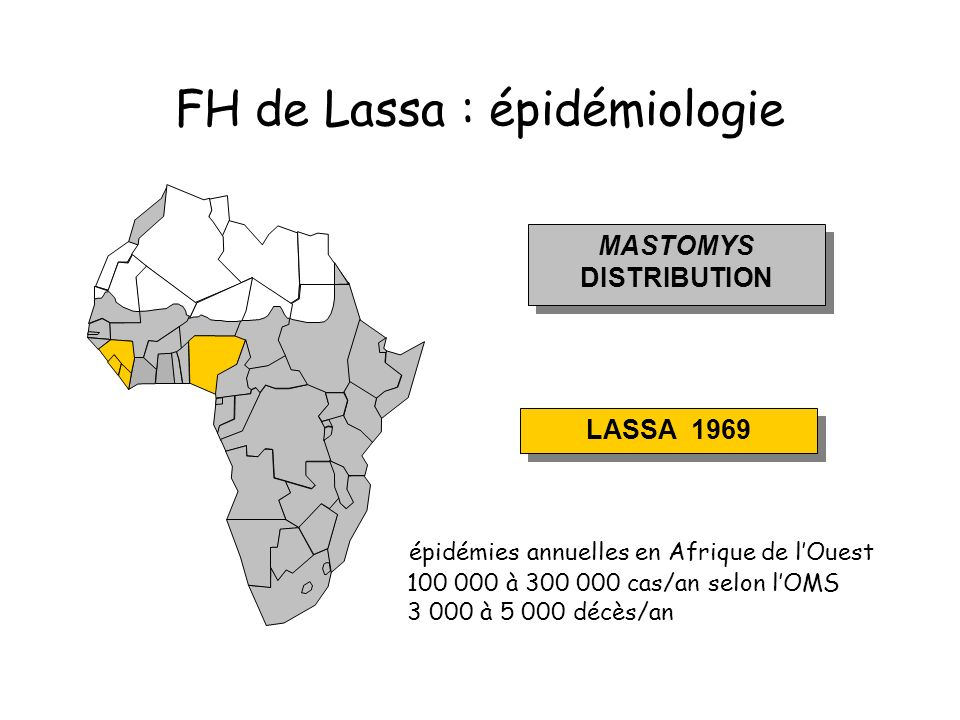 FH de Lassa : épidémiologie