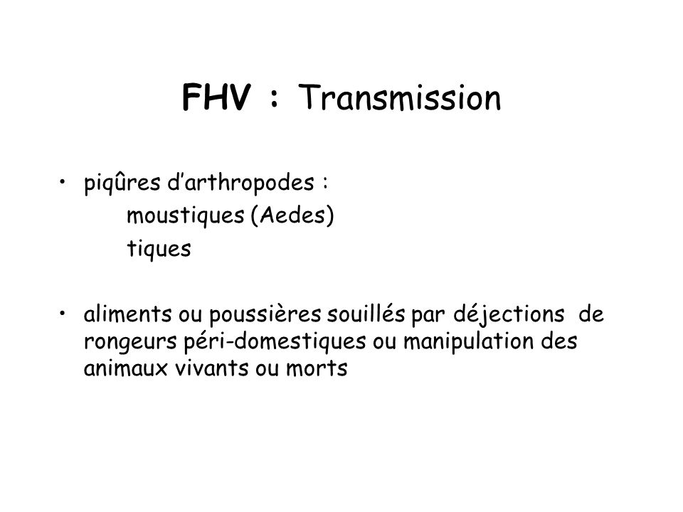 FHV : Transmission piqûres d'arthropodes : moustiques (Aedes) tiques
