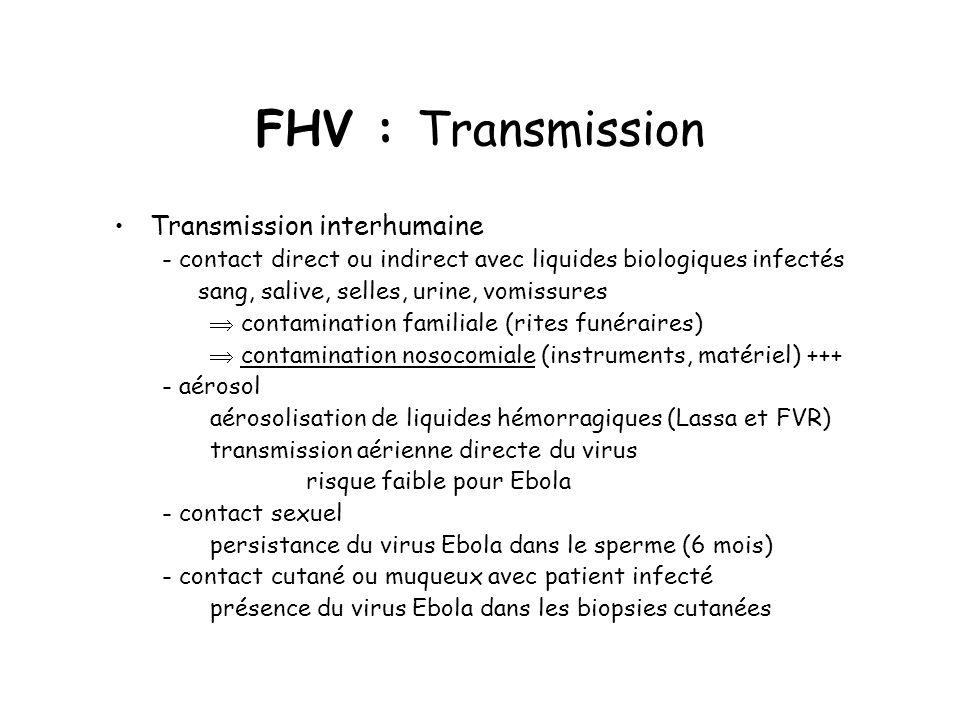 FHV : Transmission Transmission interhumaine