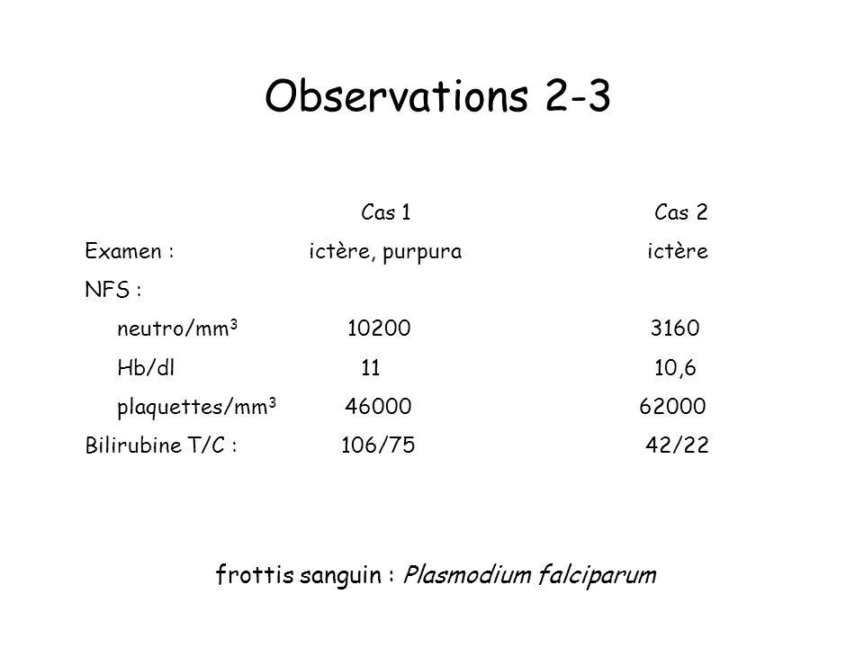 Observations 2-3 frottis sanguin : Plasmodium falciparum Cas 1 Cas 2