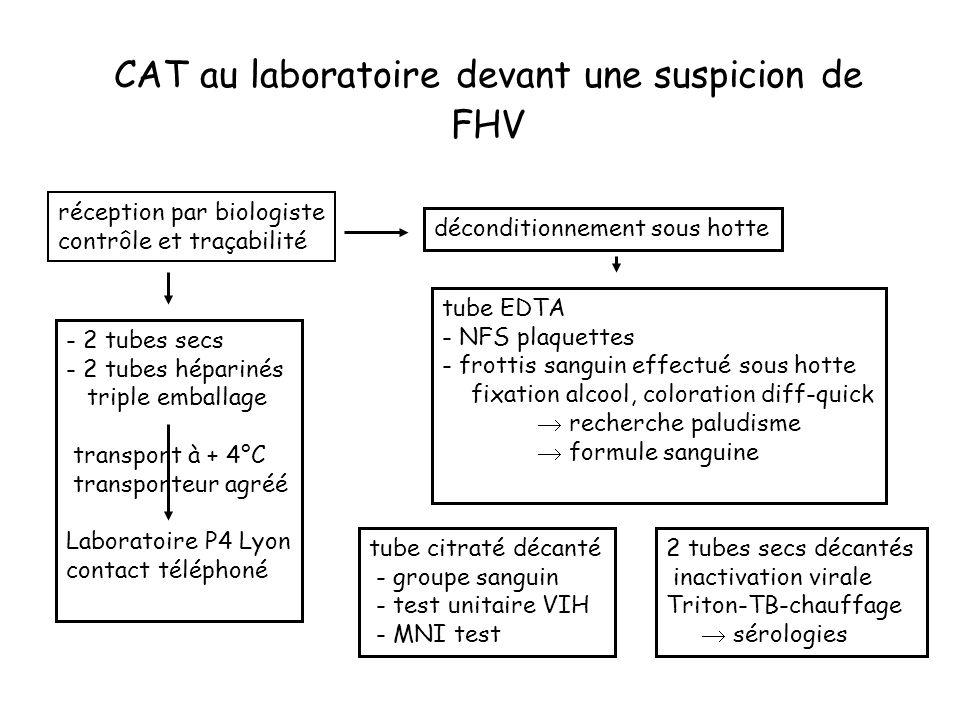 CAT au laboratoire devant une suspicion de FHV