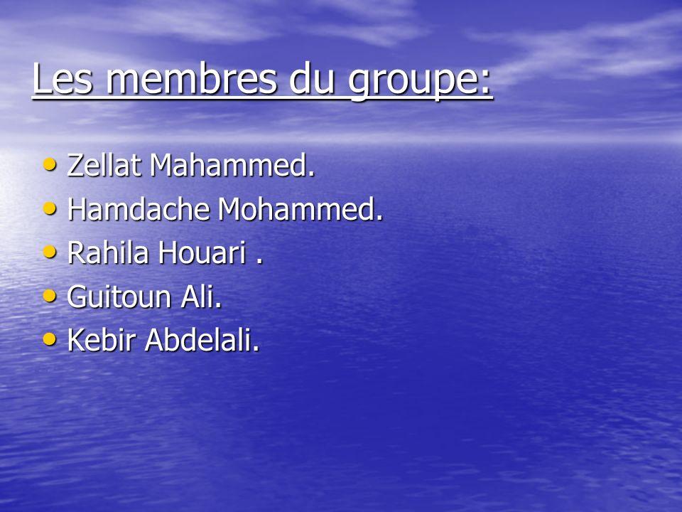 Les membres du groupe: Zellat Mahammed. Hamdache Mohammed.
