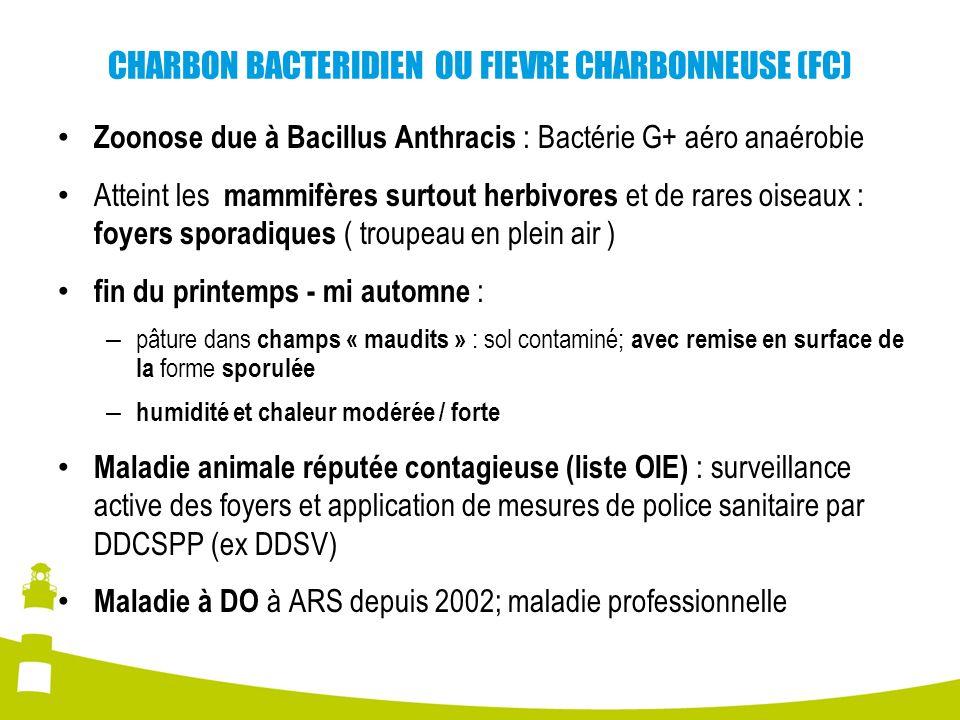 CHARBON BACTERIDIEN OU FIEVRE CHARBONNEUSE (FC)