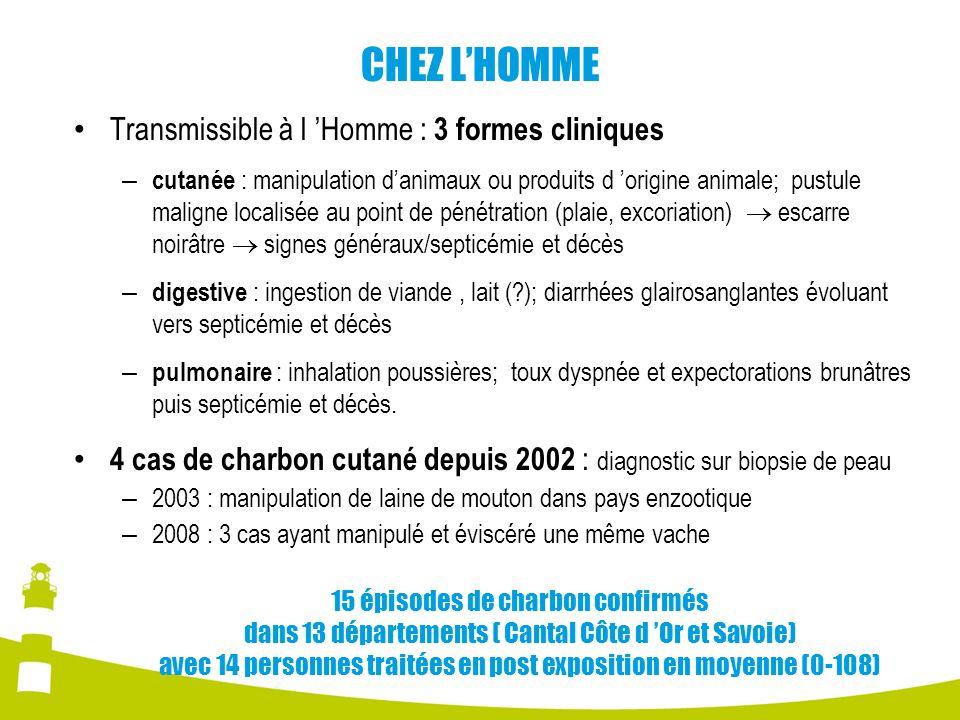 CHEZ L'HOMME Transmissible à l 'Homme : 3 formes cliniques