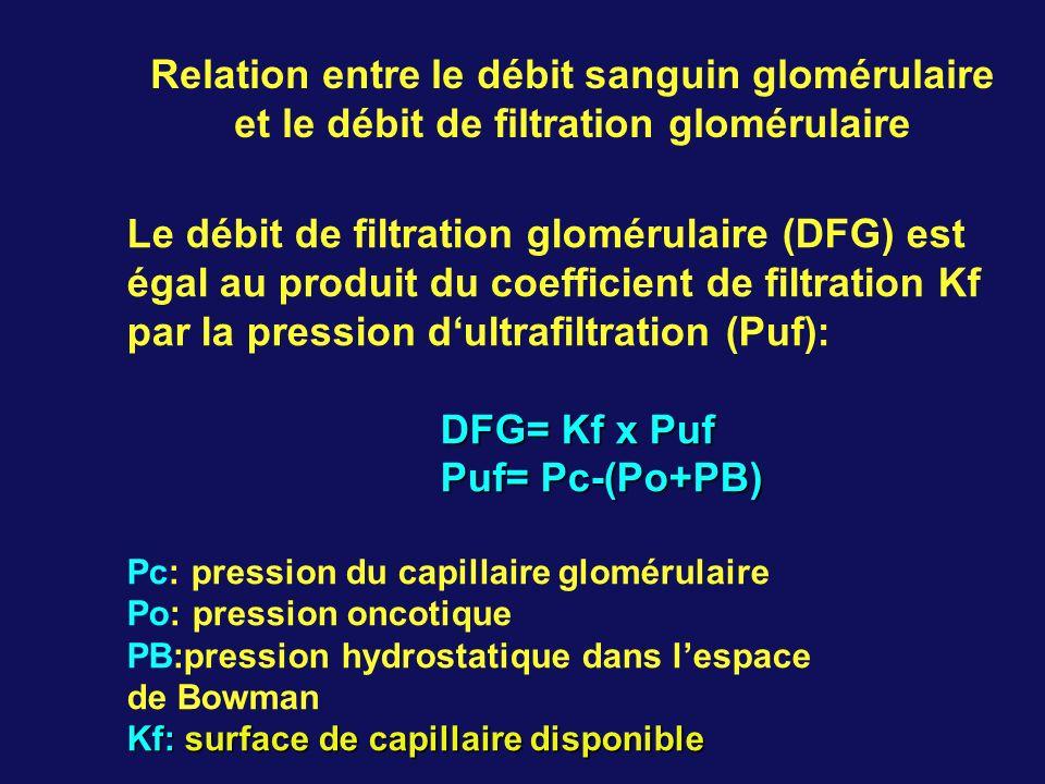 et le débit de filtration glomérulaire
