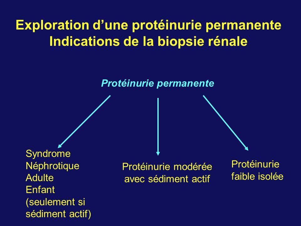 Exploration d'une protéinurie permanente