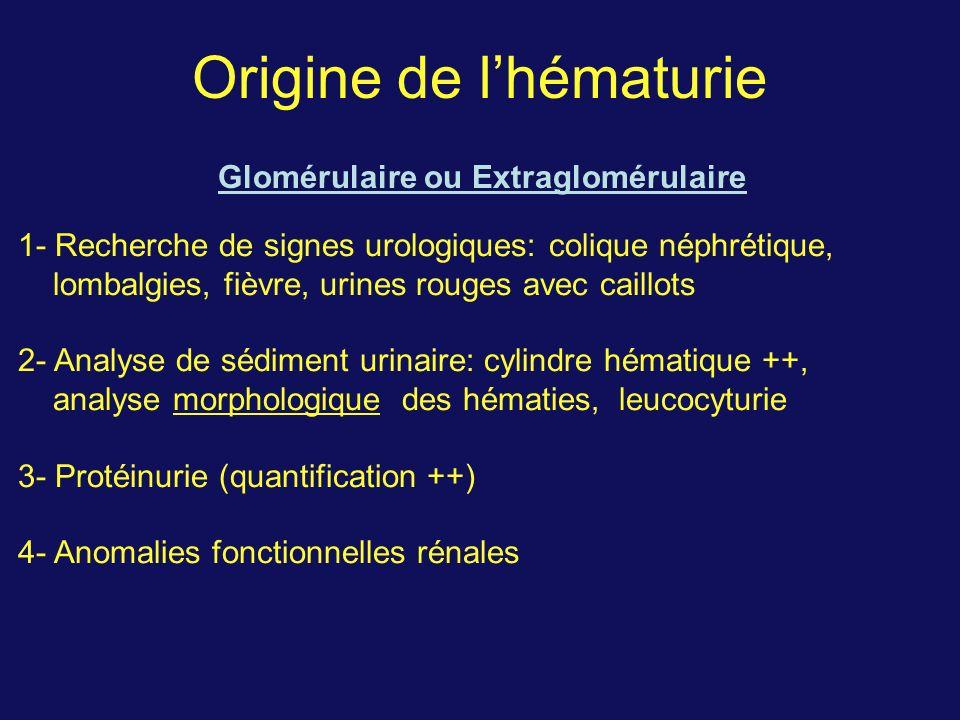 Origine de l'hématurie