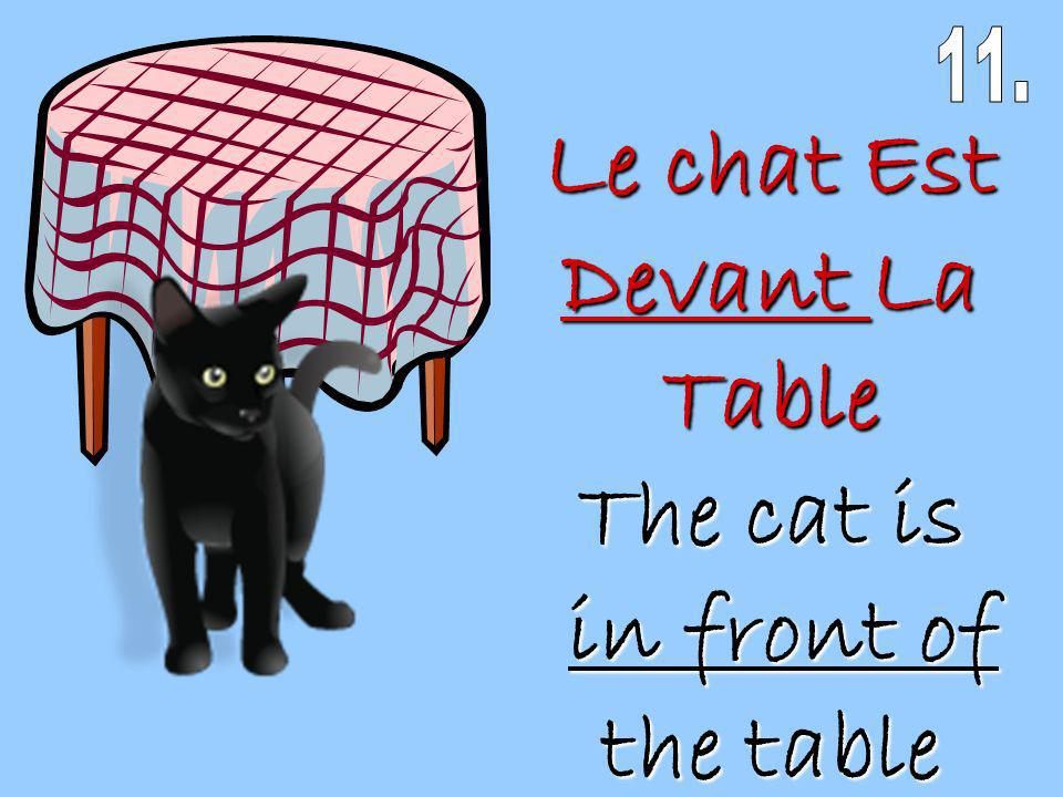Le chat Est Devant La Table