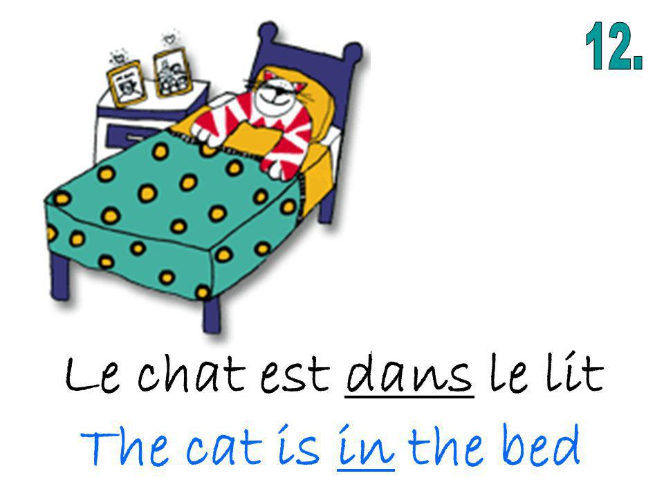 Le chat est dans le lit The cat is in the bed