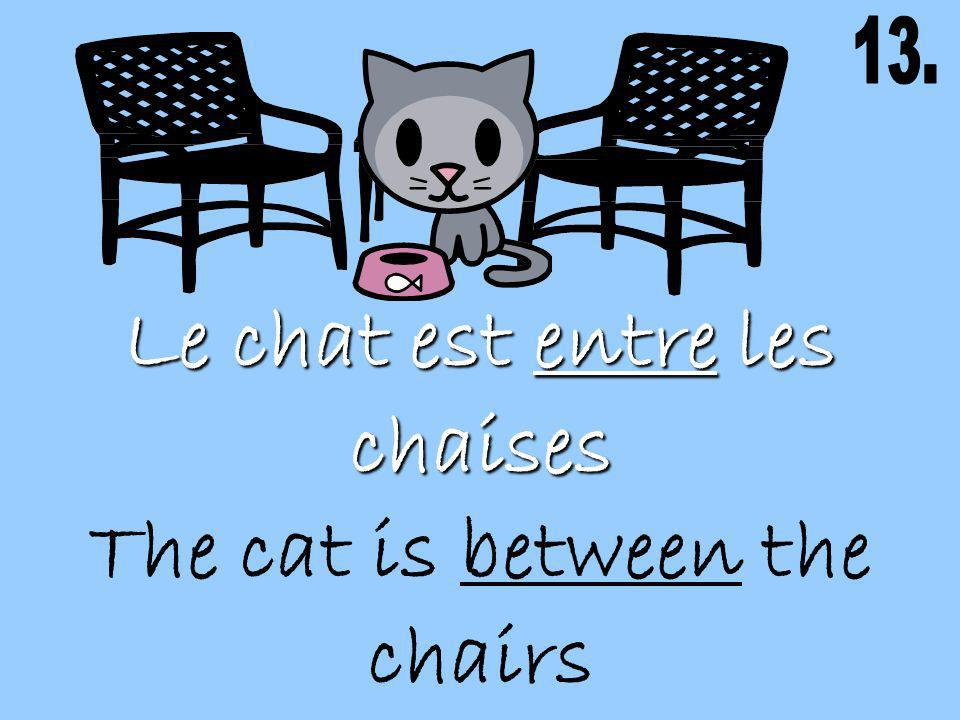 Le chat est entre les chaises The cat is between the chairs