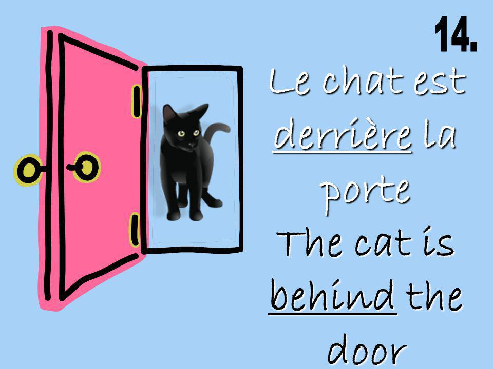 Le chat est derrière la porte The cat is behind the door