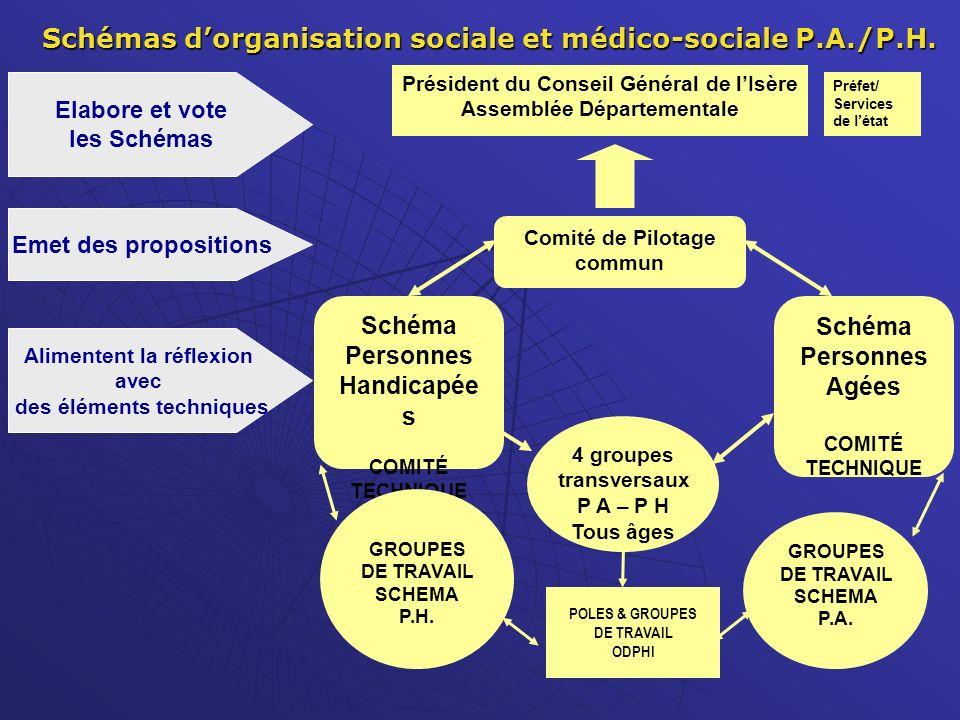 Schémas d'organisation sociale et médico-sociale P.A./P.H.