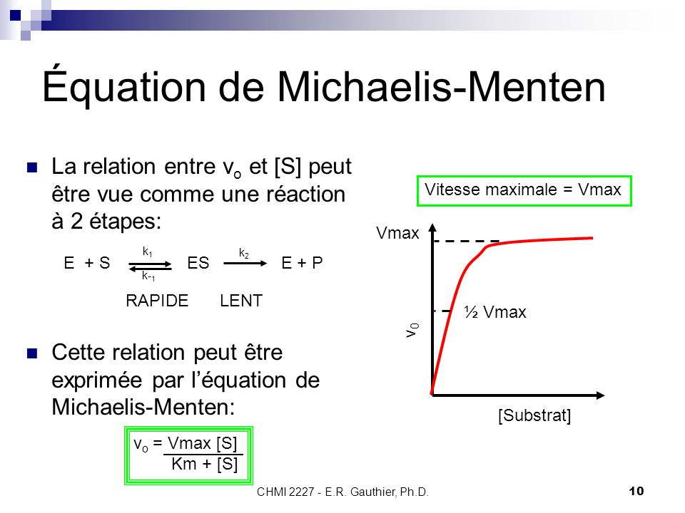 Équation de Michaelis-Menten