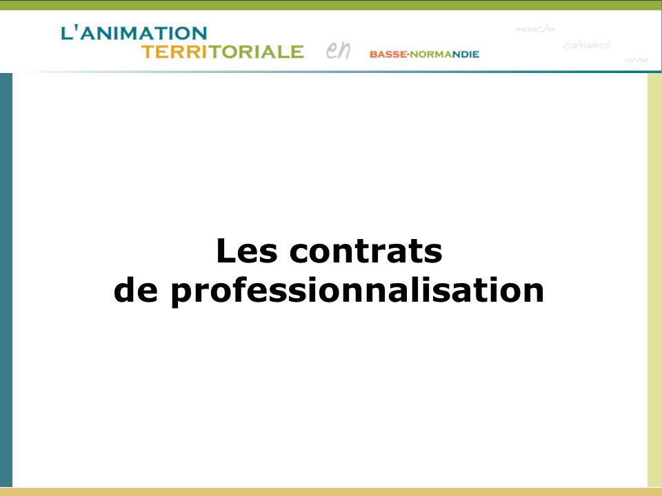 de professionnalisation