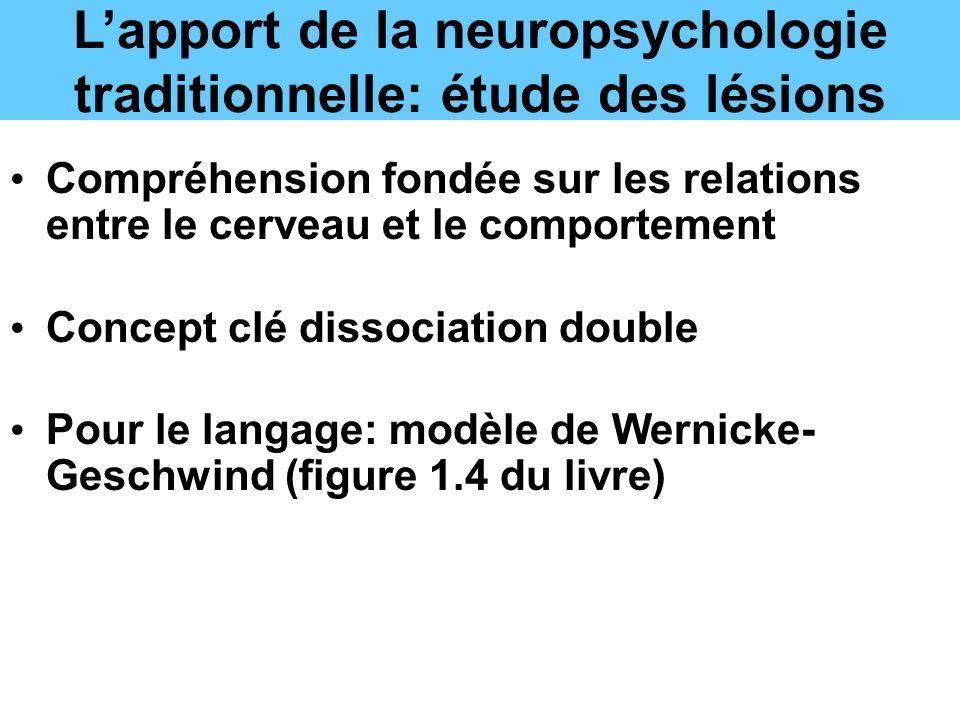 L'apport de la neuropsychologie traditionnelle: étude des lésions