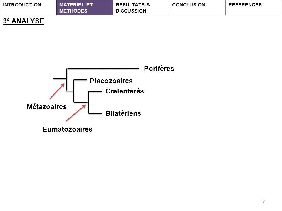3° ANALYSE Porifères Placozoaires Cœlentérés Métazoaires Bilatériens