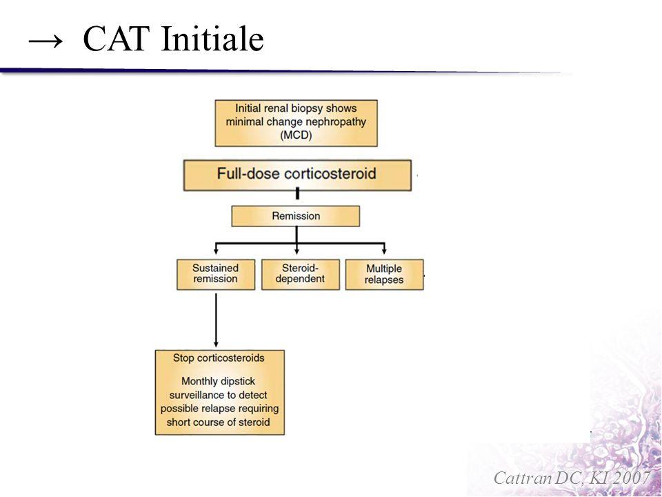 → CAT Initiale Cattran DC, KI 2007