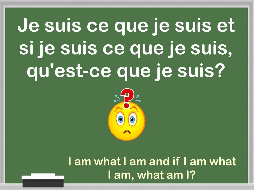 I am what I am and if I am what I am, what am I