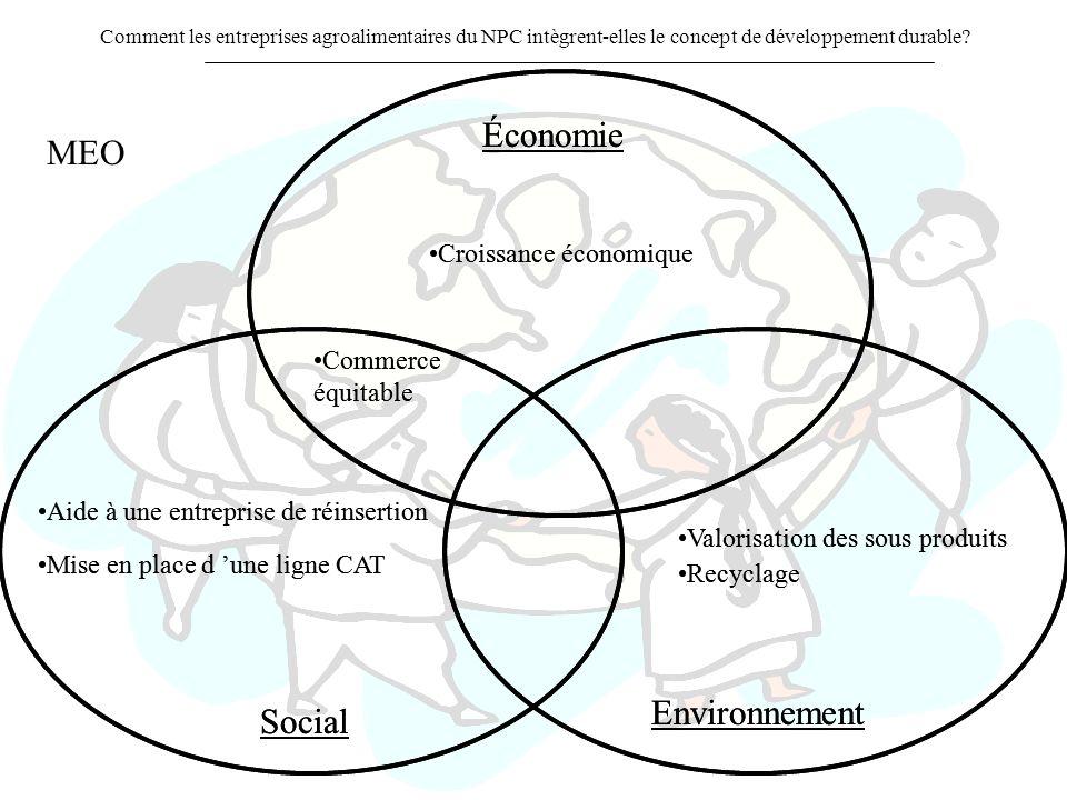 Économie Économie MEO Environnement Environnement Social Social