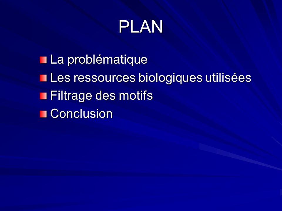 PLAN La problématique Les ressources biologiques utilisées