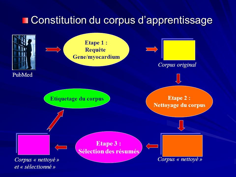 Constitution du corpus d'apprentissage