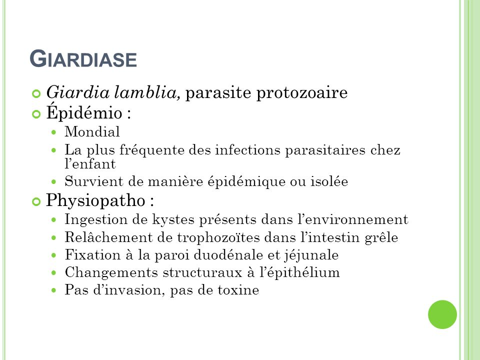 Giardiase Giardia lamblia, parasite protozoaire Épidémio :