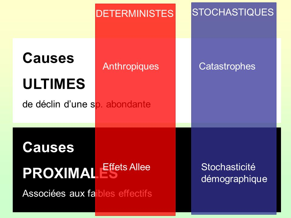 Causes ULTIMES Causes PROXIMALES DETERMINISTES STOCHASTIQUES