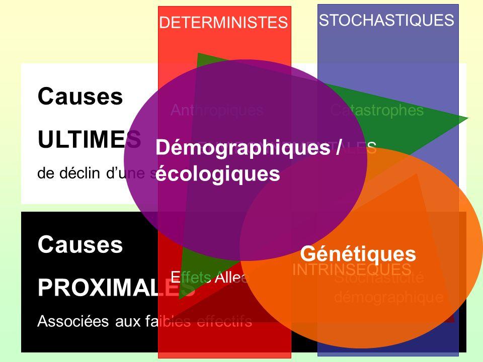 Causes ULTIMES Causes PROXIMALES Démographiques / écologiques