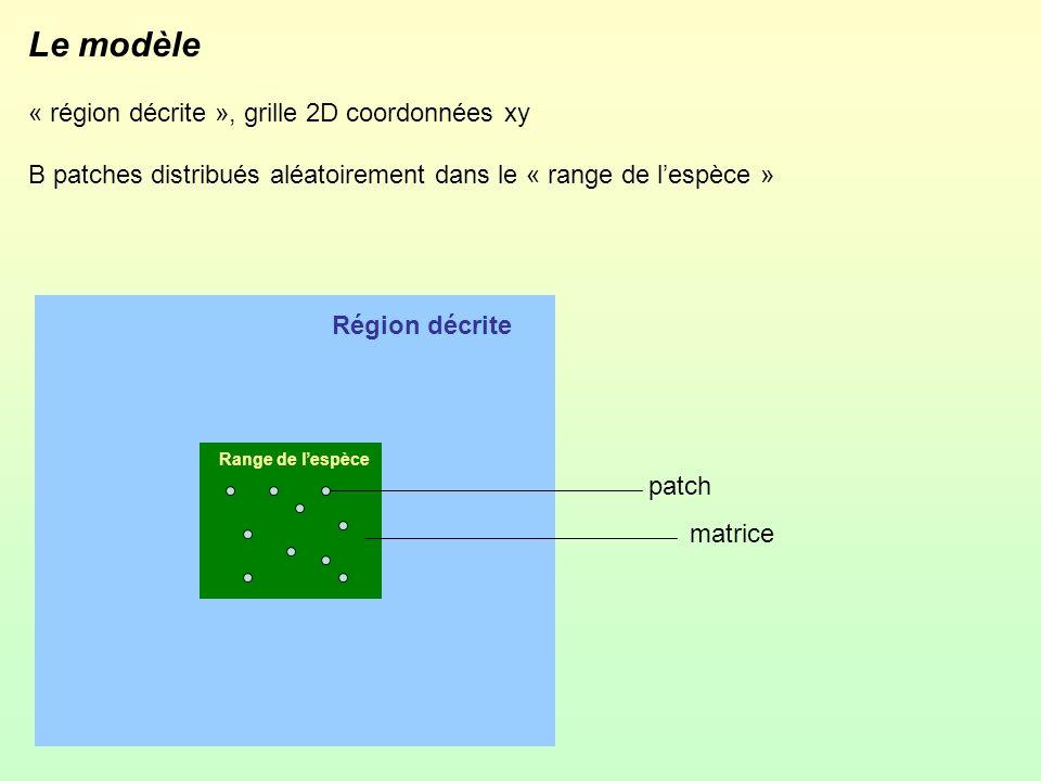 Le modèle « région décrite », grille 2D coordonnées xy