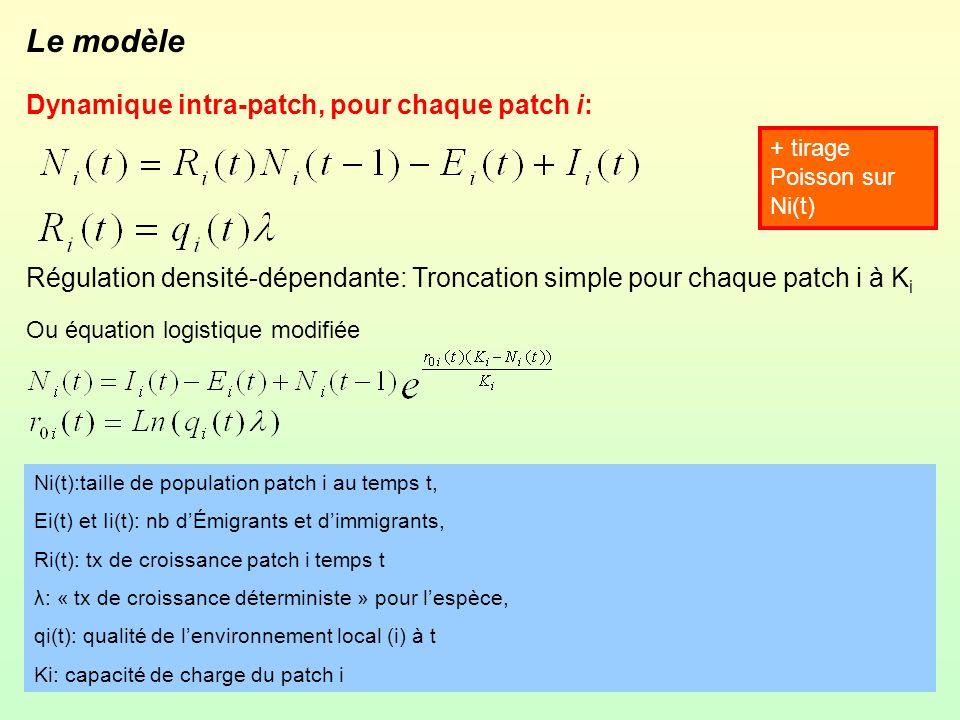 Le modèle Dynamique intra-patch, pour chaque patch i: