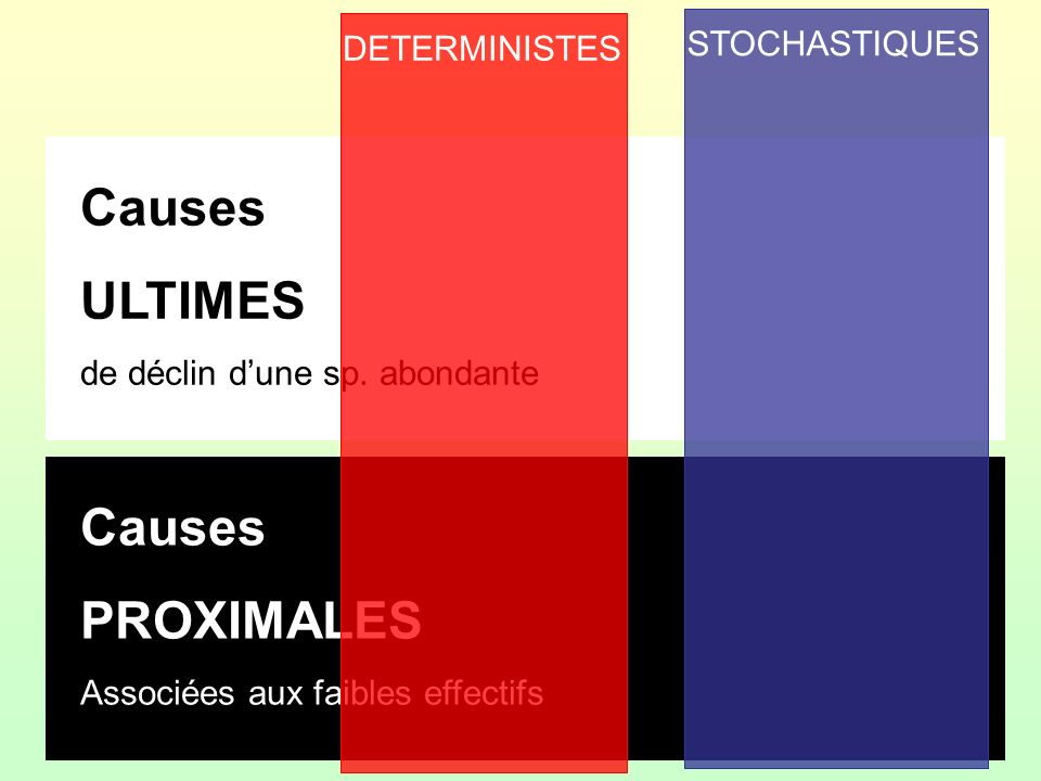 Causes ULTIMES Causes PROXIMALES STOCHASTIQUES DETERMINISTES