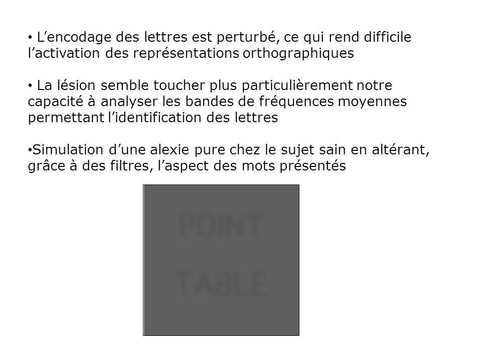 L'encodage des lettres est perturbé, ce qui rend difficile l'activation des représentations orthographiques