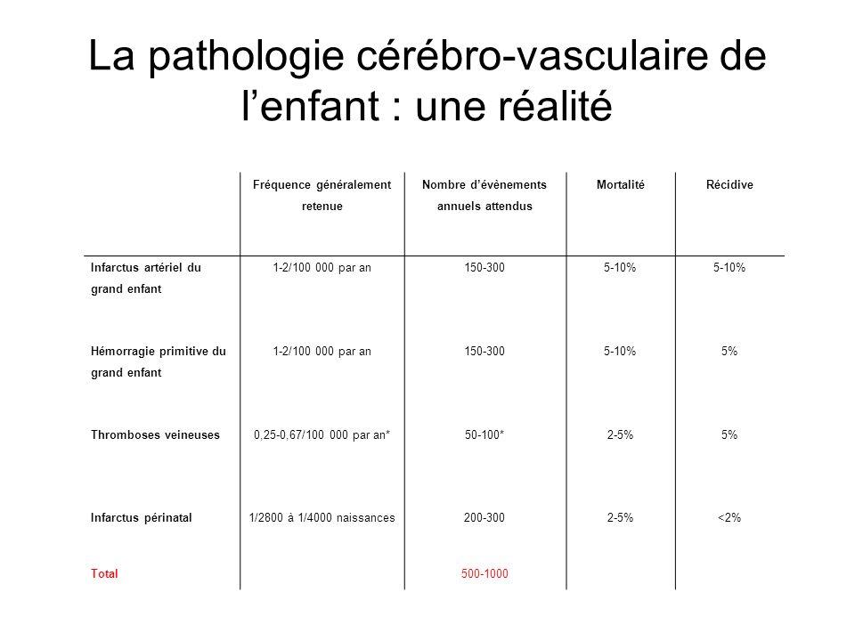 La pathologie cérébro-vasculaire de l'enfant : une réalité