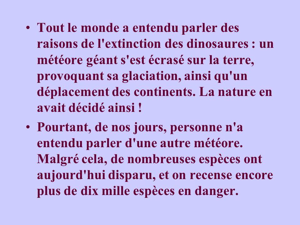 Tout le monde a entendu parler des raisons de l extinction des dinosaures : un météore géant s est écrasé sur la terre, provoquant sa glaciation, ainsi qu un déplacement des continents. La nature en avait décidé ainsi !