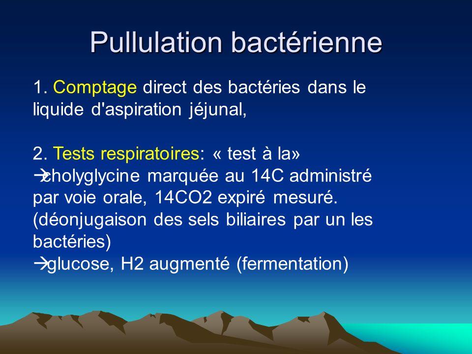 Pullulation bactérienne