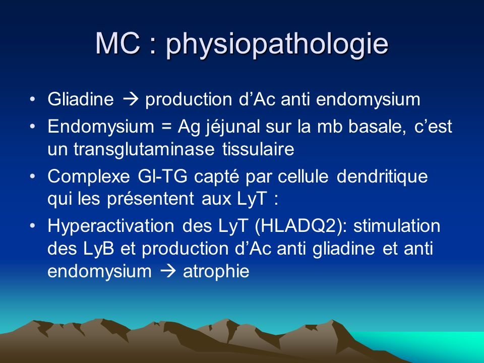 MC : physiopathologie Gliadine  production d'Ac anti endomysium
