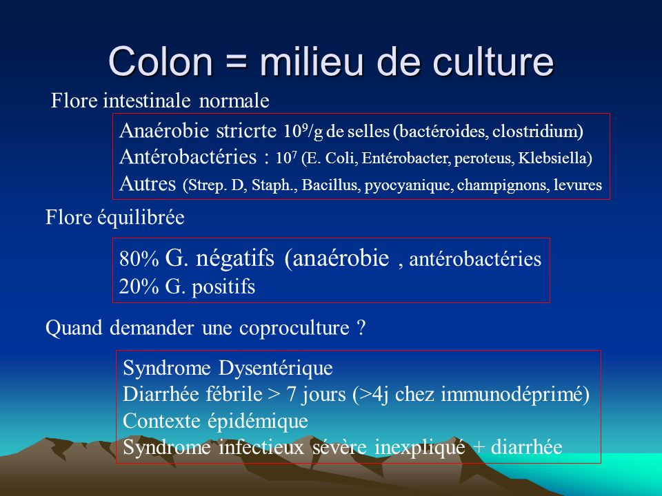 Colon = milieu de culture