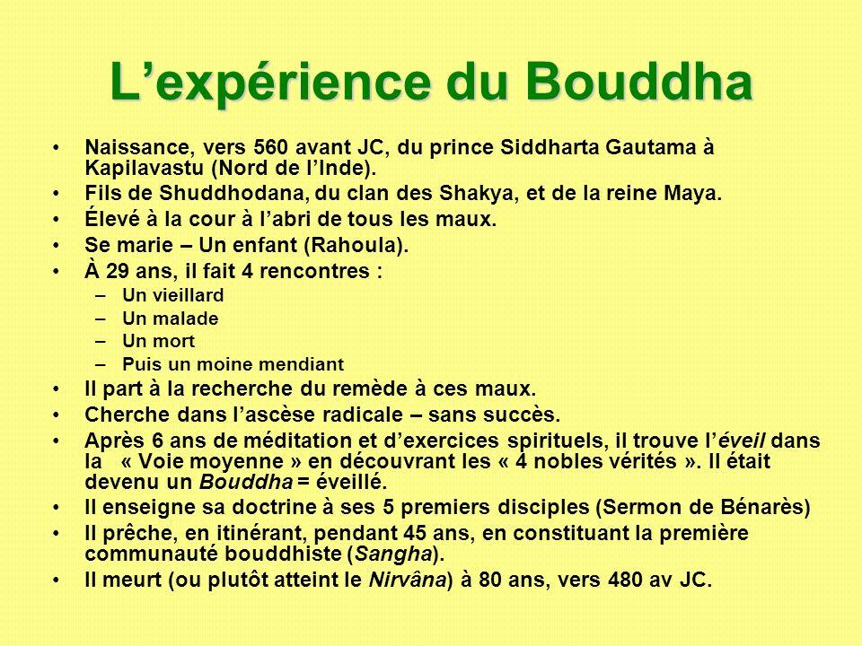 L'expérience du Bouddha
