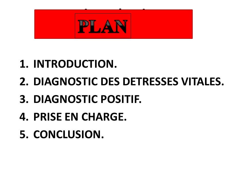 PLAN introduction INTRODUCTION. DIAGNOSTIC DES DETRESSES VITALES.