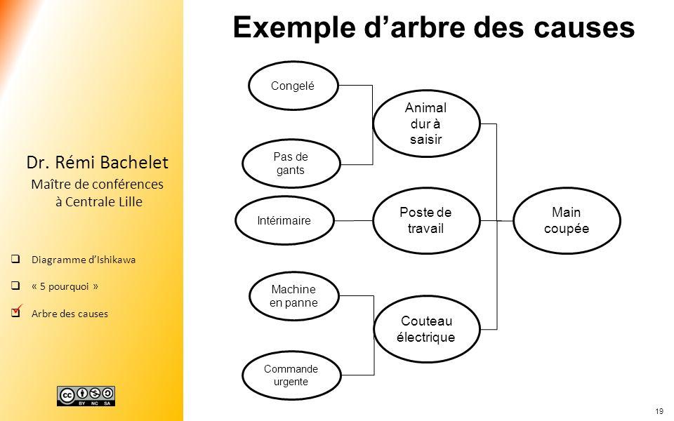 Exemple d'arbre des causes