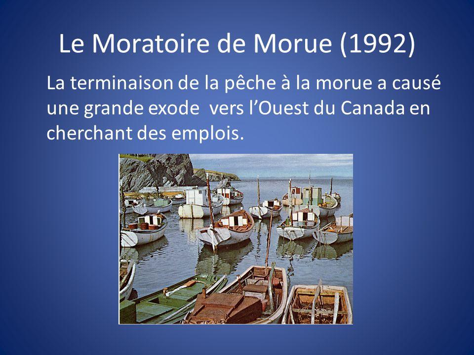 Le Moratoire de Morue (1992)