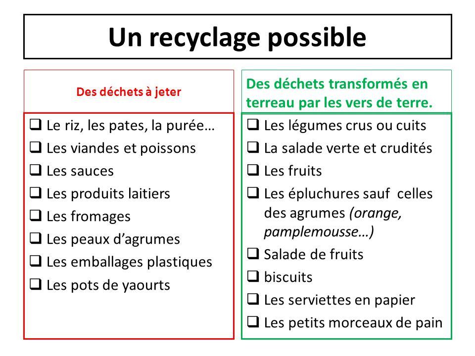 Un recyclage possible Des déchets à jeter. Des déchets transformés en terreau par les vers de terre.